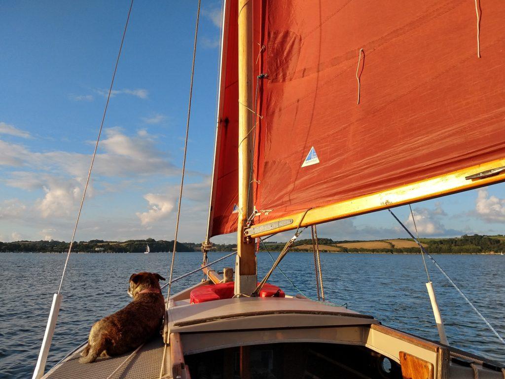 Mylor Boat Hire Shrimper